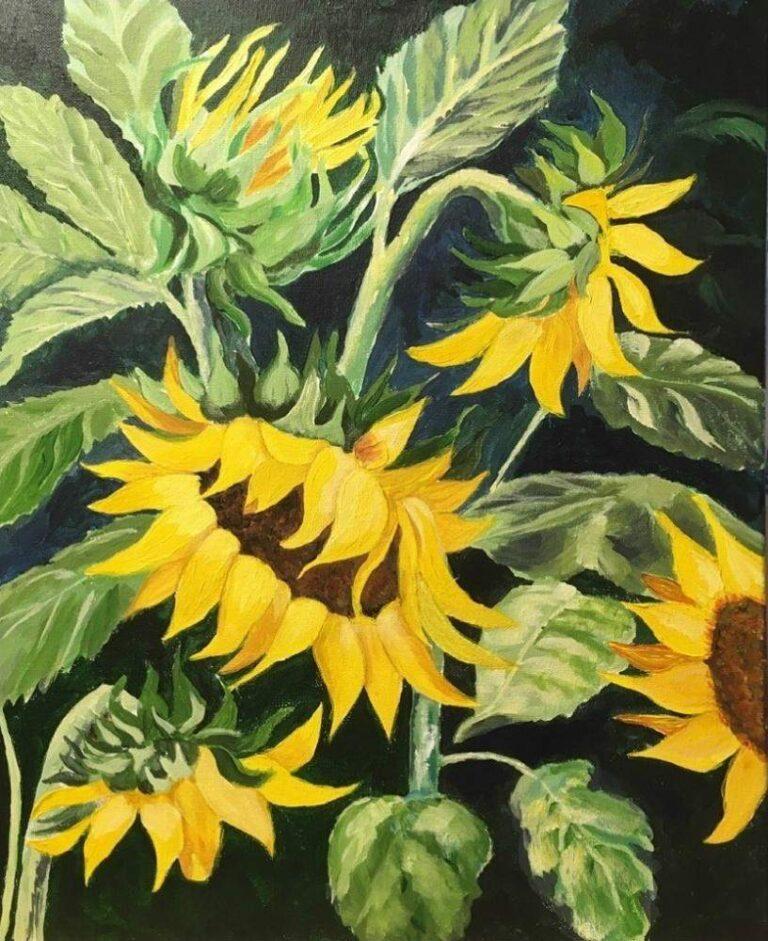 Sunflowers 18×24