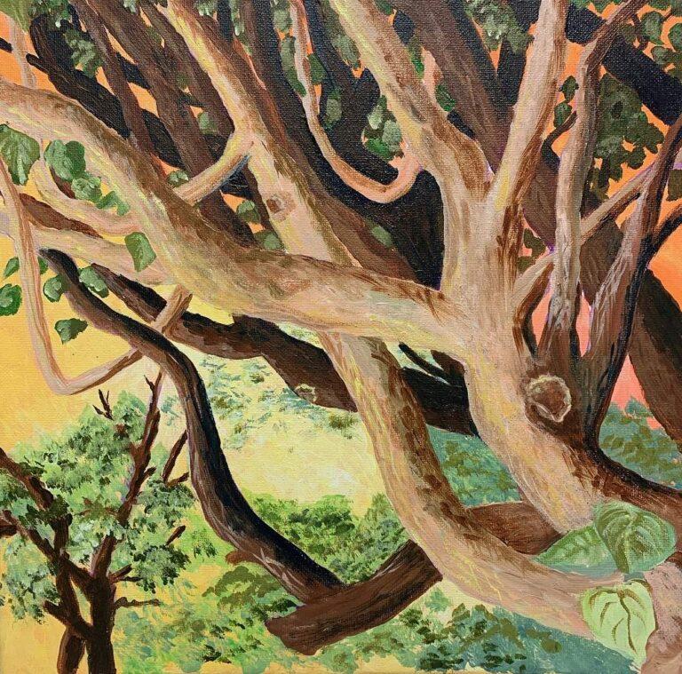 Tree Arms 12x12