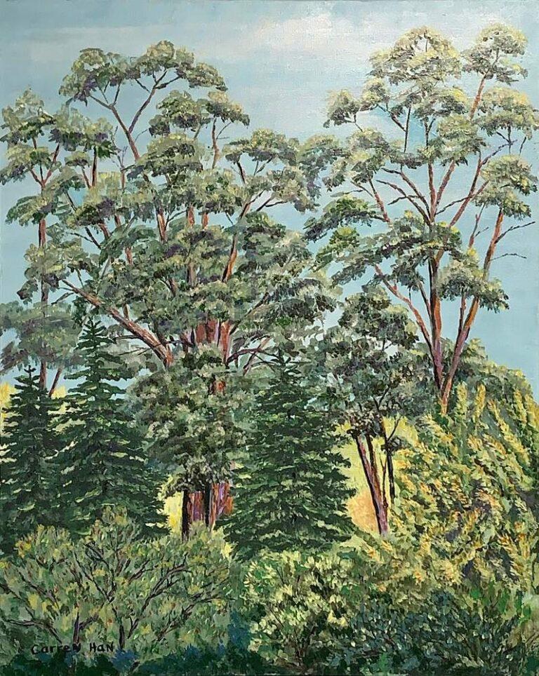 Tree Tops 30x24