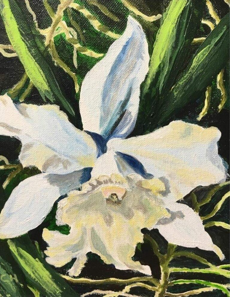 White Orchid 8×10