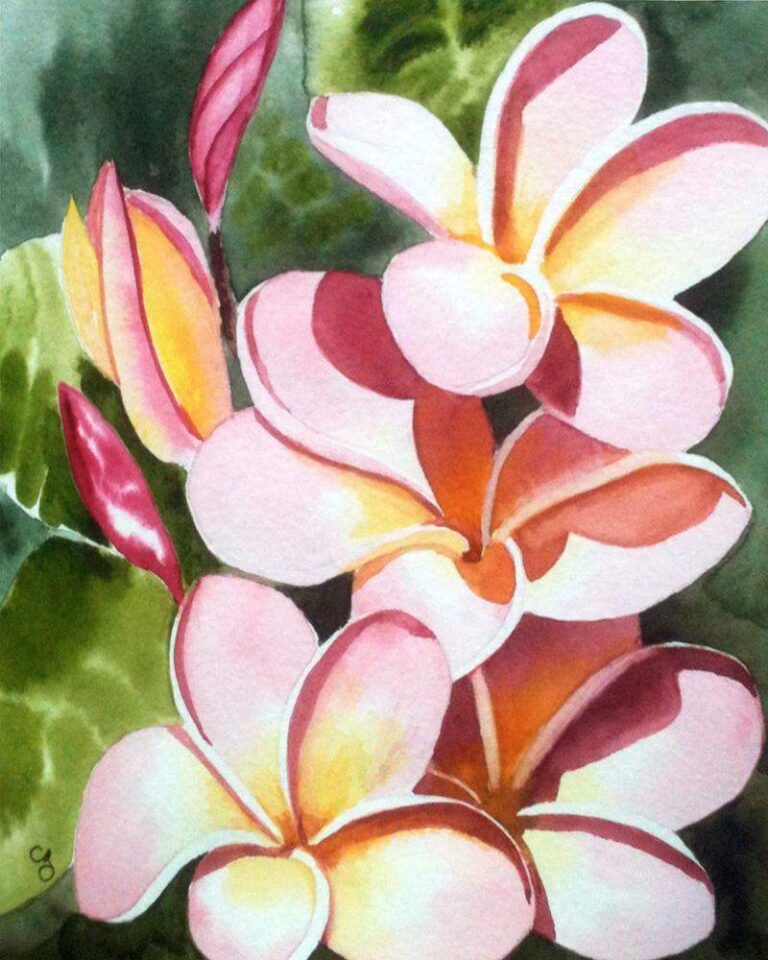 The First Plumeria
